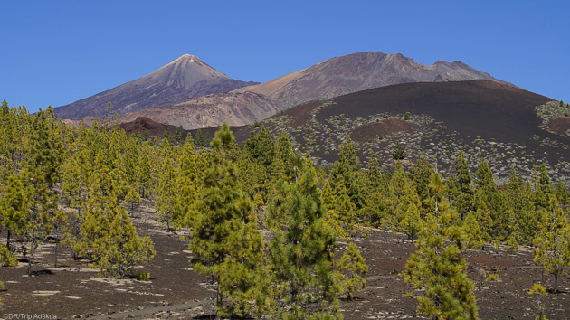 Votre séjour randonnée en liberté sur l'île de Tenerife aux Canaries
