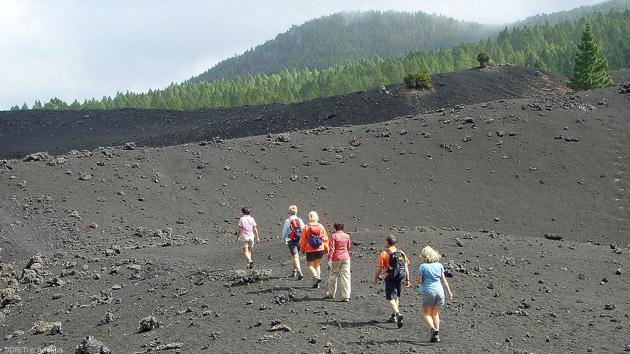 Découvrez les plus beaux sentiers de randonnées de Tenerife