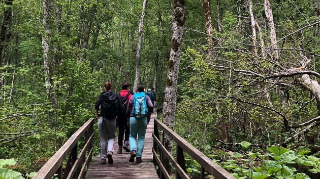 Randonnez dans les parcs nationaux du Monténégro