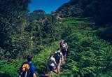 Votre séjour randonnée à Tenerife aux Canaries - voyages adékua