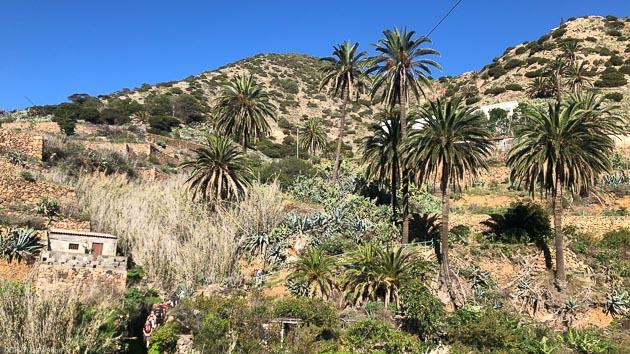 Marchez sur les plus beaux sentiers de La Gomera aux Canaries