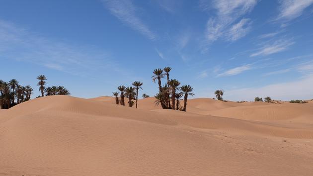 Venez découvrir le désert marocain avec un trek sur-mesure