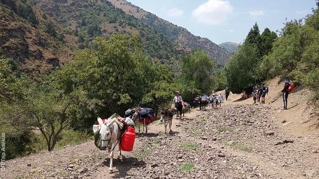Un trek accompagné sur les sentiers de l'Ouzbékistan