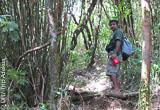 Un trek au sommet des Knuckles Range - voyages adékua