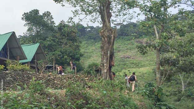 Les plus beaux itinéraires des Kunckles Range au Sri Lanka