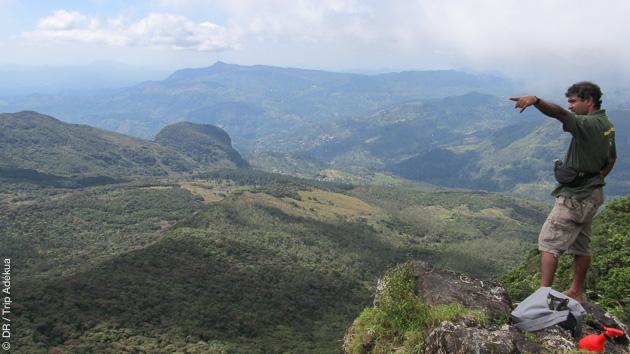 Le Corbet's Gap pour un point de vue unique sur le Sri Lanka