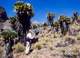 Jours 4 et 5: Loita hills, pays Maasaï - voyages adékua