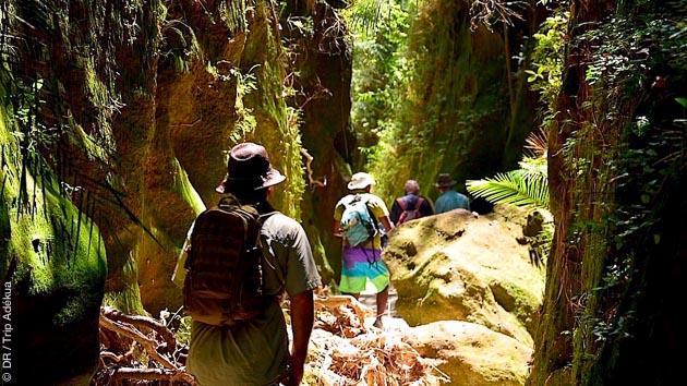 Ce circuit trek vous emmène au coeur de la nature sauvage malgache, dans les Hautes Terres centrales