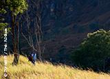 Jours 1 à 5 : arrivée à Antananarivo et premiers pas sur l'île de Madagascar - voyages adékua