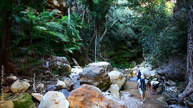 Gorges, canyons, plateaux... une variété de paysages qui font le bonheur des randonneurs à Madagascar