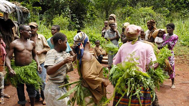 Rencontres et partage du quotidien des Pygmées bakas lors de ce trek au Cameroun